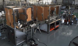 Servo Motor Electronic Cigarette Filling Production Machine (PET bottle)